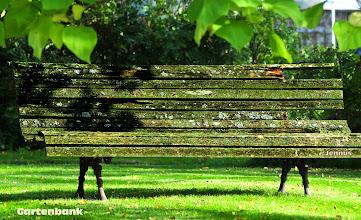 Photo: sehr alte Gartenbank