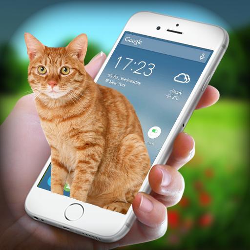 Cat on Screen - Cat in Phone Prank
