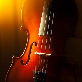 ::: Violin ::: by Muhammad Irwansyah - Artistic Objects Other Objects ( violin biola fineart )