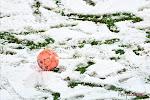 Debat van de week: Wat met veldverwarming, sneeuw en forfaitnederlagen: eigen beslissing of hard optreden? (En Gouden Schoen kon jou niet boeien!)