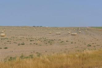 Photo: Arid farmland we passed on the way to Badlands National Park.