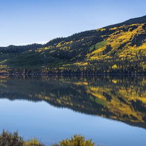 aspens-twin-lakes.jpg