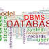 What is Database Management system...Learn what purpose does it solve.and how it helps the Business...