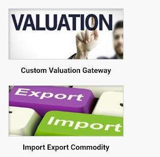 Pak Customs Information Portal - náhled