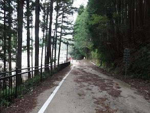 自転車と歩行者専用道を進む