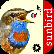 App Icon for Chants d'oiseaux automatique App in Czech Republic Google Play Store