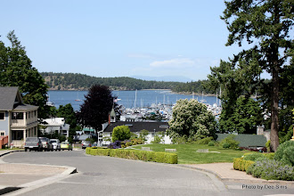 Photo: (Year 2) Day 334 - Roche Harbor