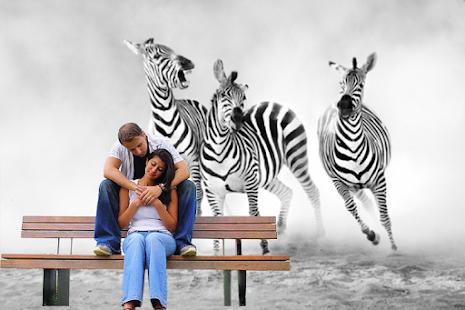 Zebra Photo Frames - Apps on Google Play