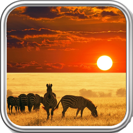 South Africa Wallpaper