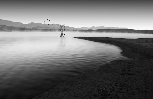alba sul lago di Francescogiacomo