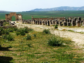 Photo: Volubilis - Decumanus towards Caracalla's Arch .......... Decumanus naar de Boog van Caracalla