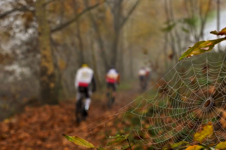 Mountain bike d'autunno.. di AlfredoNegroni