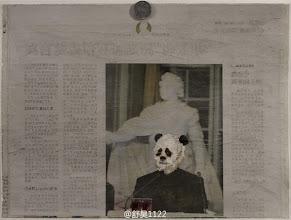 Photo: 舒昊:熊猫的胜利