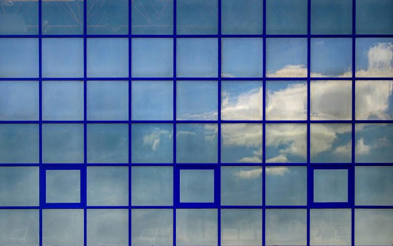 Blu e le sue sfumature di toro46