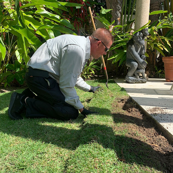 Free Termite Inspection West Palm Beach