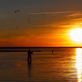 sunset fisherman by Burdell Edwin - Landscapes Sunsets & Sunrises ( ocean, rod, sunset, fishing, fly fishing, reeel, fisherman, water, lake, wading, reel,  )