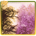 Purple spring tree background icon
