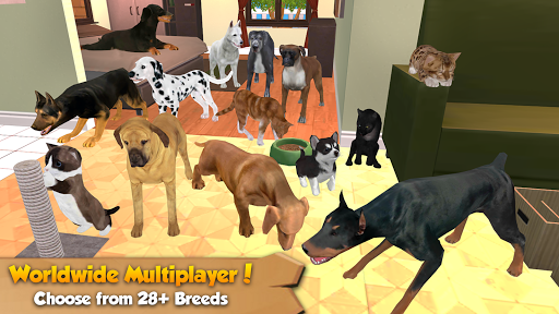 Animal games online for no