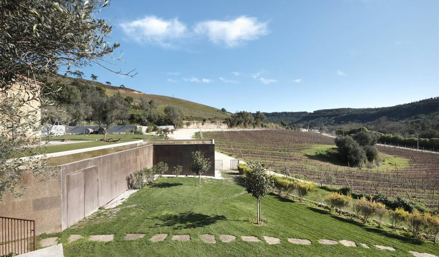 Vineyard with pool and outbuildings Torres Vedras