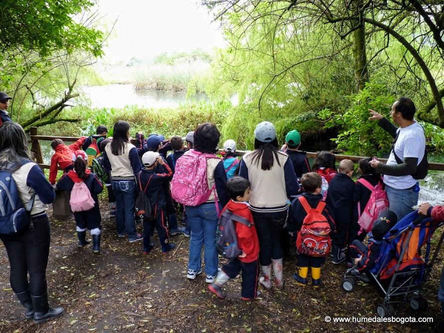 Caminata ecológica por el humedal La Conejera