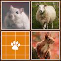 Memory - Animals icon