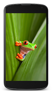 Wallpapers (Note 8, 9, S9, S10) - náhled