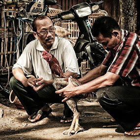 Memilih Jago by Mas Bagus - People Portraits of Men ( traditional )