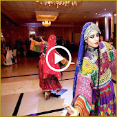 Pashto Songs & Dance  Videos