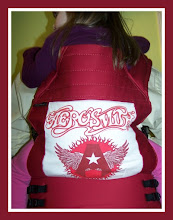 "Photo: ""Aerosmith"" custom BabyHwak Oh Snap! with cherry straps"