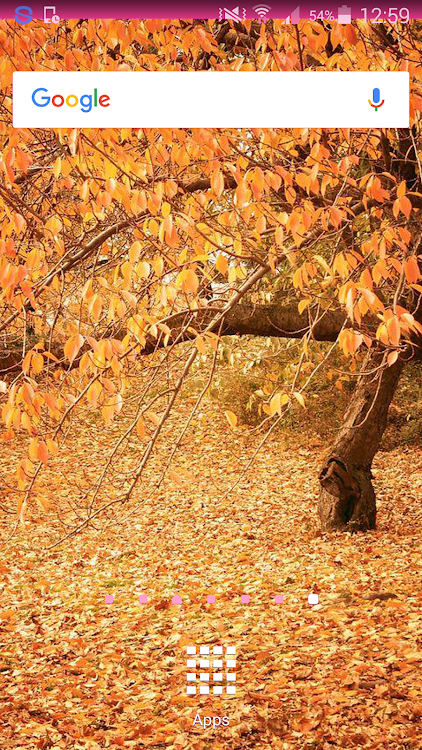 Fall Wallpaper Android Apps Appagg