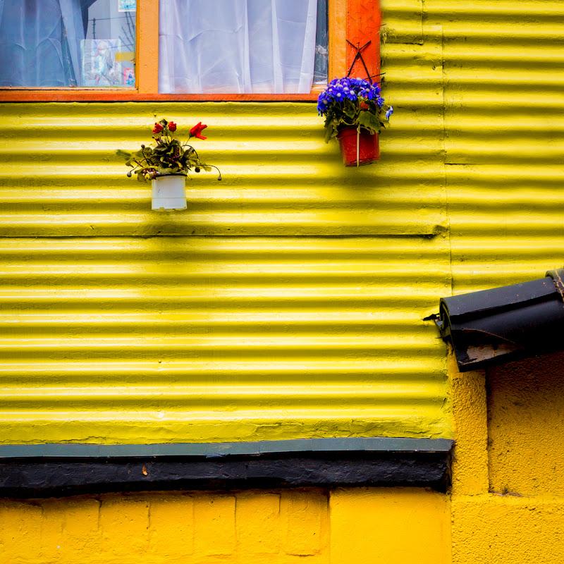 Giallo&giallo, allegramente di mariateresatoledo