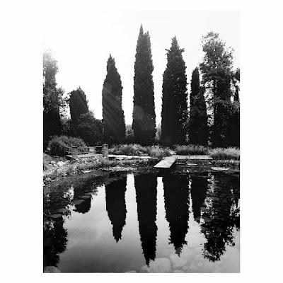 Walk on water di _ange_95
