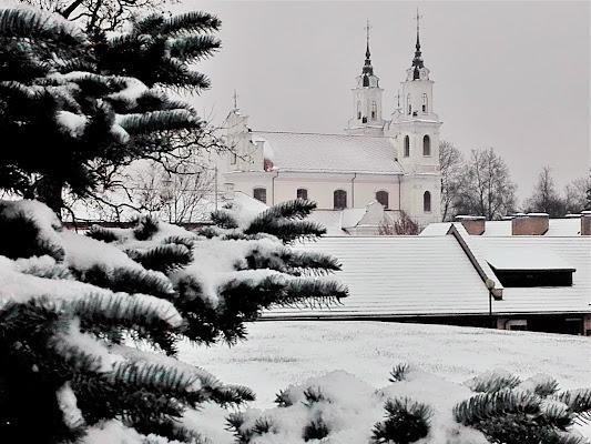 Il silenzio della neve di adimar