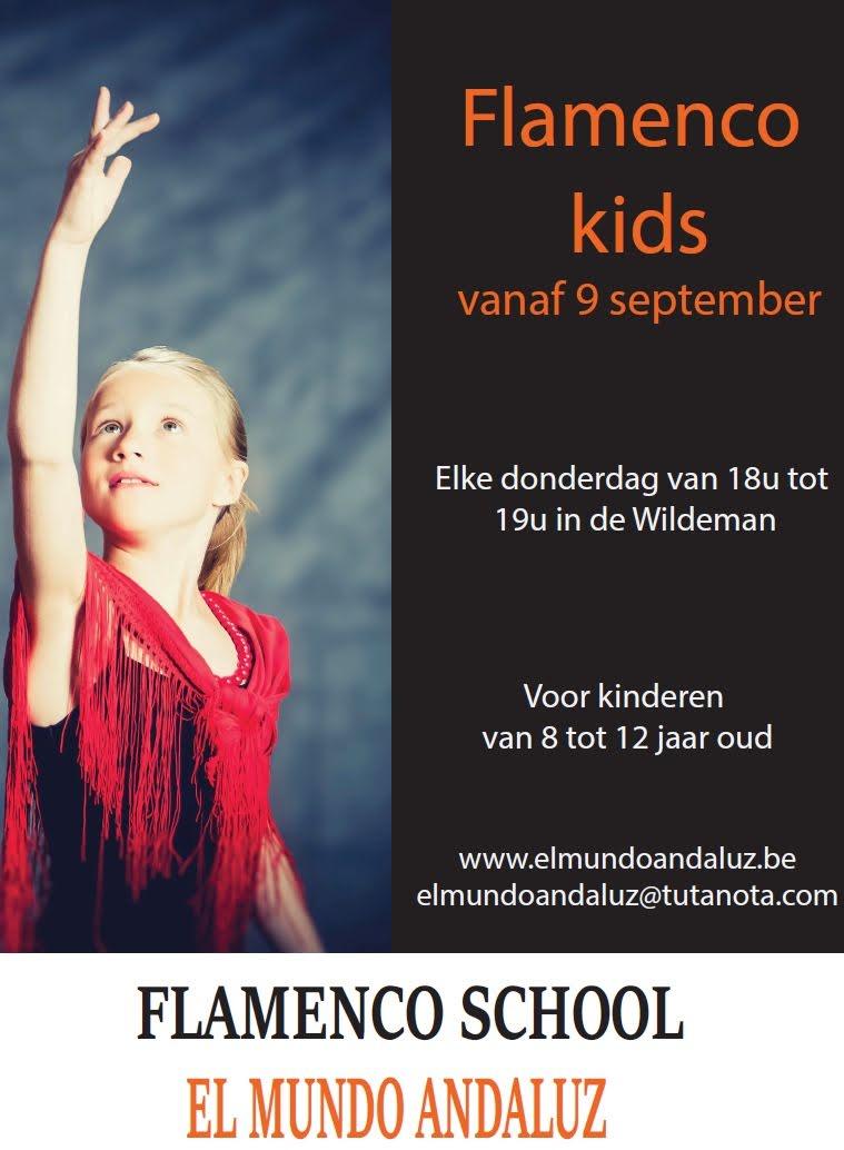 Flamencolessen voor kinderen