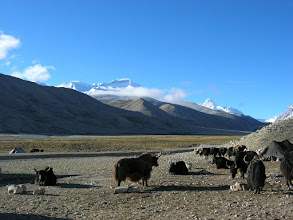 Photo: Cho Oyu as seen from Chinese BC