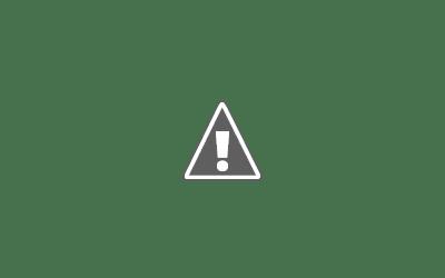Focus Magazine RIF 2017