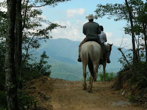 Photo: A trail ride in the Great Smoky Mountains