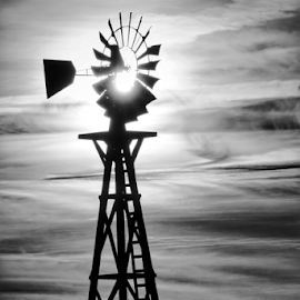 Windmill  by Todd Reynolds - Black & White Buildings & Architecture