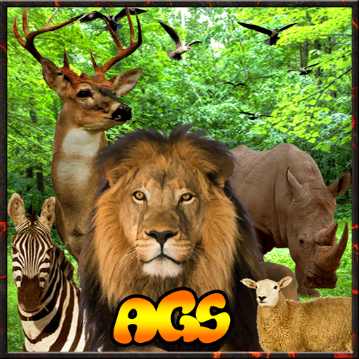 Jungle Zone Animal Hunter 3D