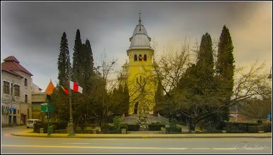 Photo: Conifere din  spatiul verde al Catedralei - 2018.02.12