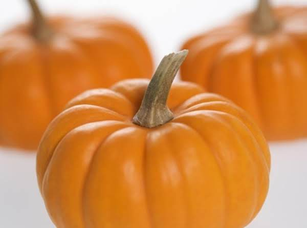 Pumpkin Pie Pumpkins In Season Soon!!!