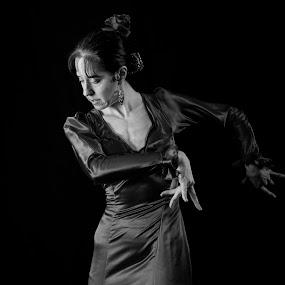 Flamenco Dancer by Brian Pierce - People Musicians & Entertainers ( flamenco, spanish, woman, claudia, dance,  )