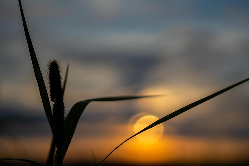 il tramonto alternativo  di Frankie__kent