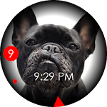 French Bulldog Face Icon