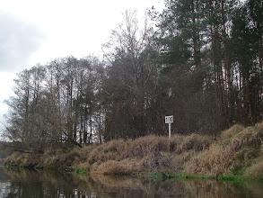 Photo: kawałek leśny