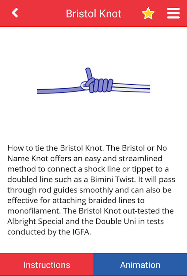 Net Knots- screenshot