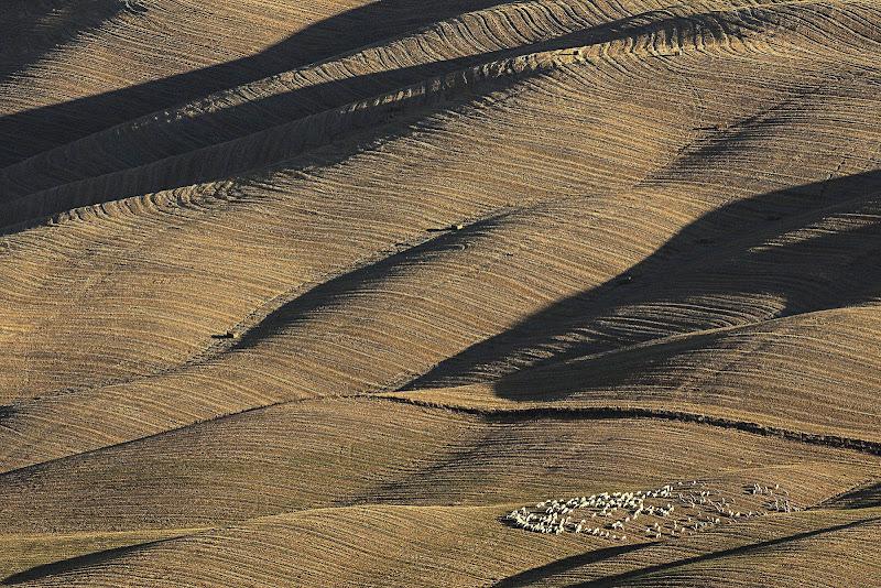 Hills di Montanaro