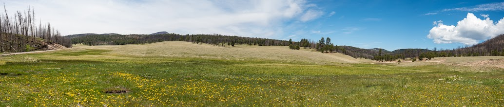 Photo: Full panorama; Valles Caldera Nat'l. Preserve