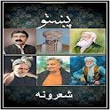 Pashto Poetry Collection icon