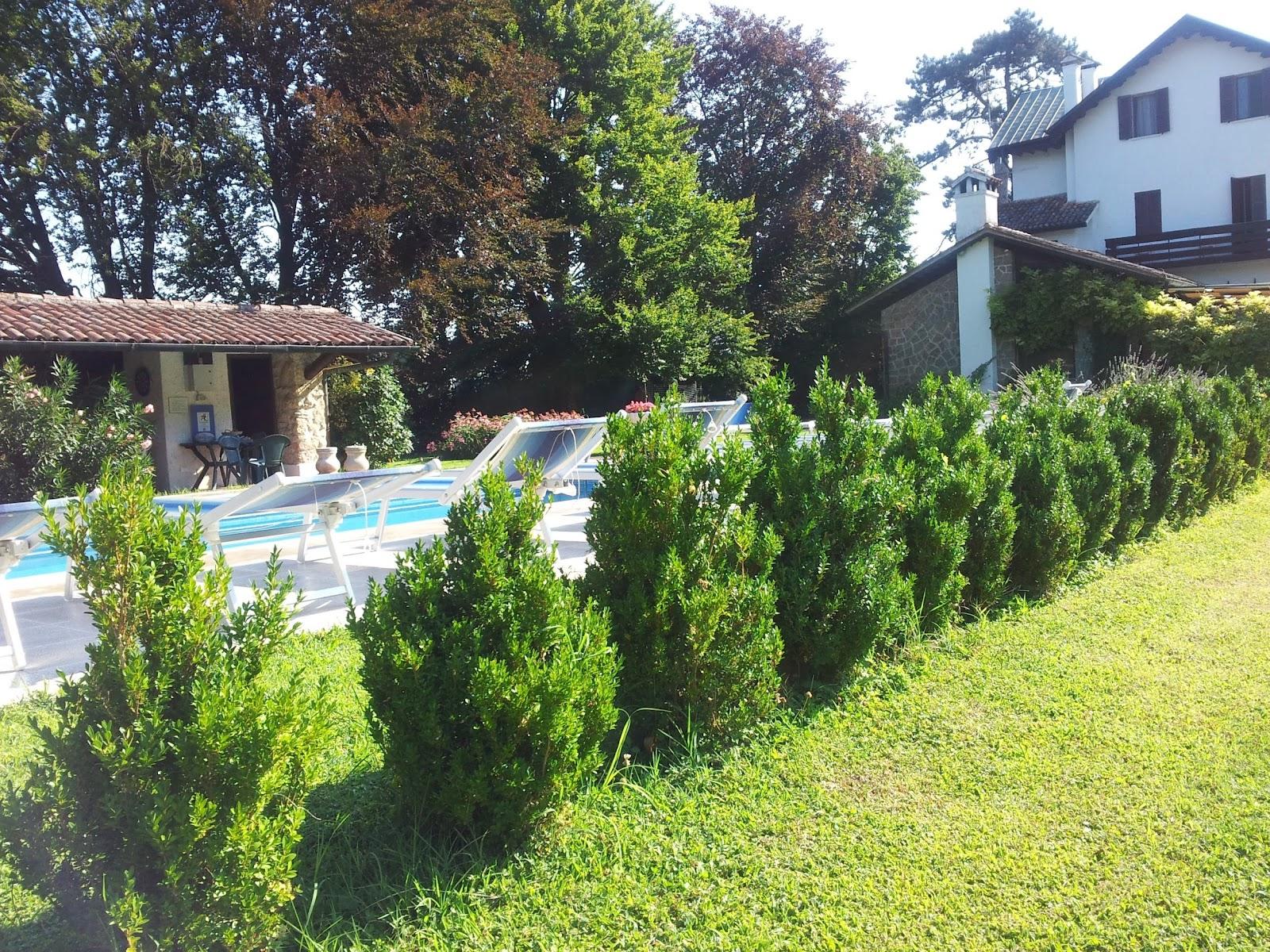 Villa dei Colli 10_Torreglia_1